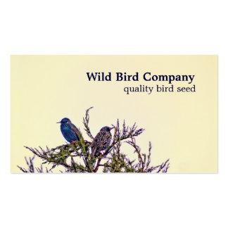 Tarjetas de visita de encargo de los pájaros de St