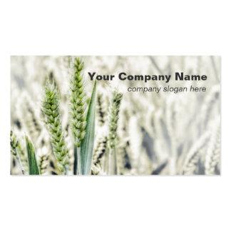 Tarjetas de visita de encargo del campo de trigo