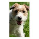 Tarjetas de visita de Jack Russell Terrier
