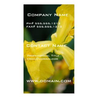Tarjetas de visita de la flor del iris amarillo