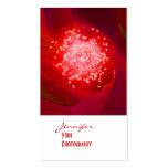 Tarjetas de visita de la fotografía del rosa rojo