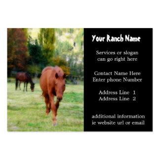 Tarjetas de visita de la fuente del rancho o de la