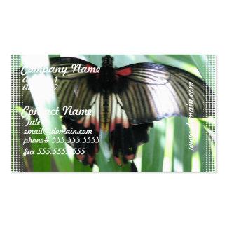Tarjetas de visita de la granja de la mariposa