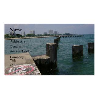 Tarjetas de visita de la línea de la playa del lag
