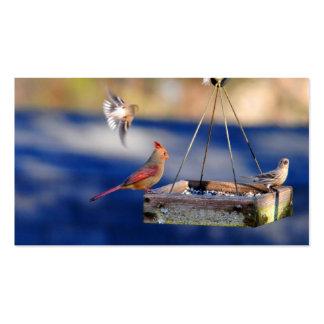 Tarjetas de visita de la mesa de desayuno (pájaros