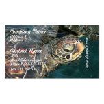 Tarjetas de visita de la tortuga de la natación