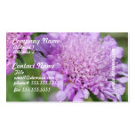 Tarjetas de visita de las flores de acerico