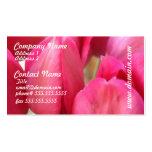 Tarjetas de visita de los bulbos del tulipán