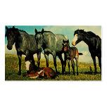 Tarjetas de visita de los caballos del vintage