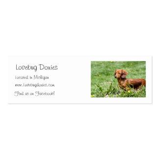 Tarjetas de visita de los Doxies de Lovebug