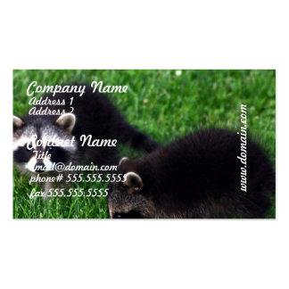 Tarjetas de visita de los mapaches del bebé