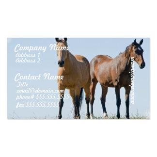 Tarjetas de visita de los pares del caballo del mu