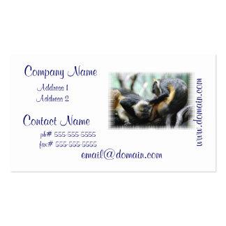 Tarjetas de visita de monos de Guenon