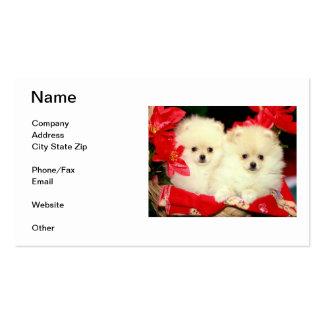 Tarjetas de visita de Pomeranian
