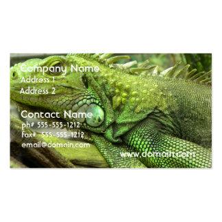Tarjetas de visita de reclinación del lagarto