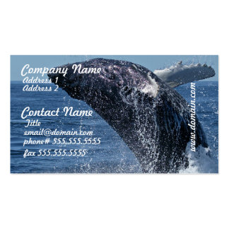 Tarjetas de visita de salto de la ballena jorobada