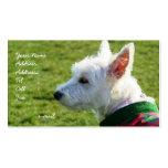 Tarjetas de visita de Terrier blanco de montaña de