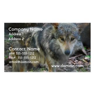 Tarjetas de visita de vagabundeo del lobo
