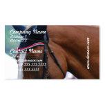 Tarjetas de visita del caballo de Warmblood del ho