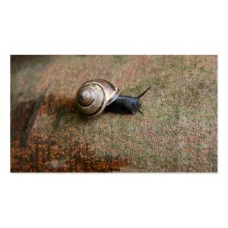 Tarjetas de visita del caracol
