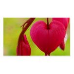Tarjetas de visita del corazón sangrante (paisaje)