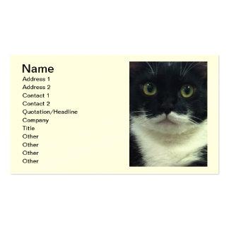 Tarjetas de visita del gatito del smoking