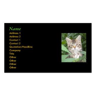 Tarjetas de visita del gatito