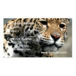 Tarjetas de visita del gato de leopardo