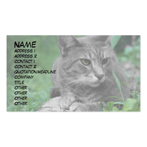 Tarjetas de visita del gato de los ojos verdes