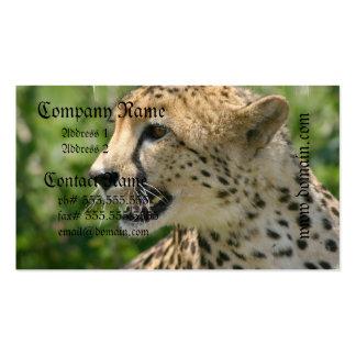 Tarjetas de visita del guepardo del gruñido