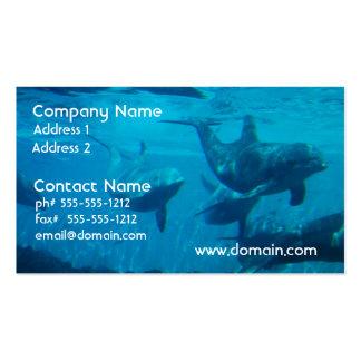 Tarjetas de visita del juego del delfín