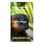 Tarjetas de visita del Lemur de Brown