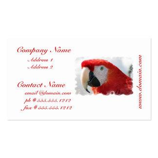 Tarjetas de visita del Macaw del escarlata