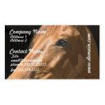 Tarjetas de visita del perfil del caballo de la ca