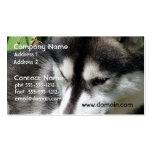 Tarjetas de visita del perfil del husky siberiano