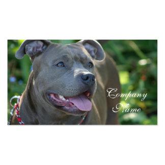 Tarjetas de visita del perro de Pitbull