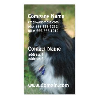 Tarjetas de visita del perro de Pomeranian
