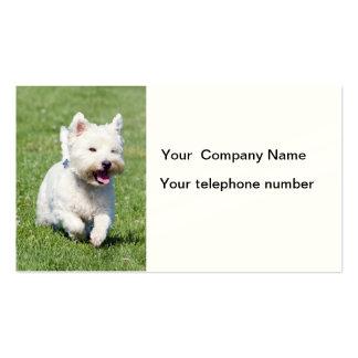 Tarjetas de visita del perro de Terrier blanco de