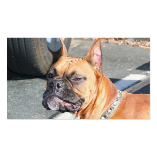 Tarjetas de visita del perro del boxeador del cerv