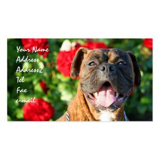 Tarjetas de visita del perro del boxeador