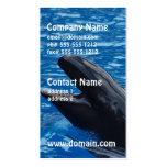 Tarjetas de visita falsas de la orca