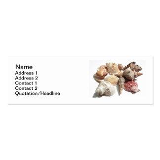 Tarjetas de visita flacas de los Seashells
