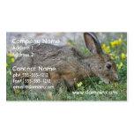 Tarjetas de visita hambrientas del conejito