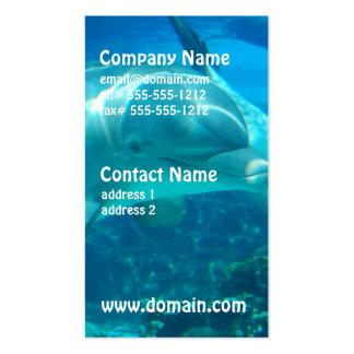 Tarjetas de visita juguetonas de los delfínes