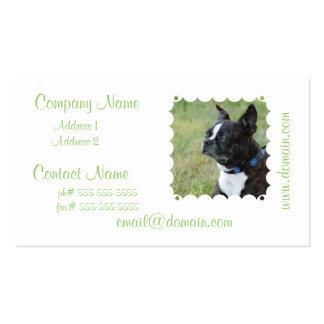 Tarjetas de visita lindas de Boston Terrier