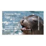 Tarjetas de visita lindas del león marino