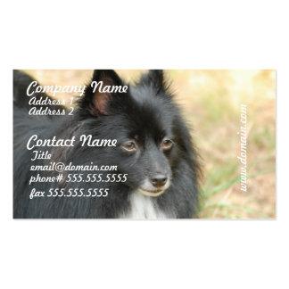 Tarjetas de visita negras de Pomeranian