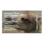Tarjetas de visita principales del camello