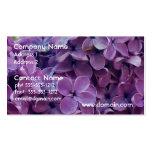 Tarjetas de visita púrpuras bonitas de las lilas
