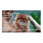 Tarjetas de visita rojas de monos del Langur